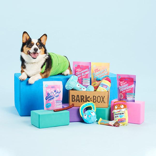 subscription gift ideas - bark box